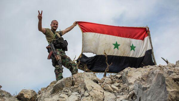 Застава Сирије - Sputnik Србија