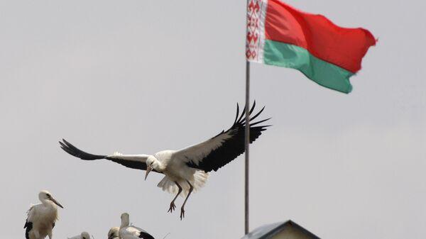 Застава Белорусије - Sputnik Србија