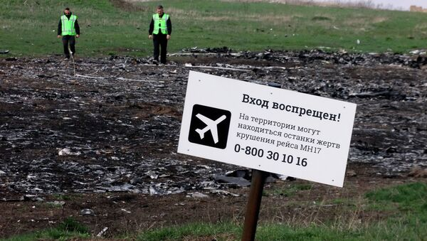 Место пада авиона Малезија ерлајнза (лет MH17) у Украјини. - Sputnik Србија