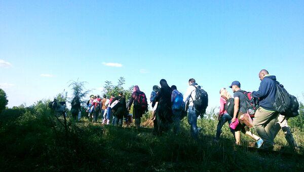 Izbeglice ulaze u Mađarsku sporednim putevima - Sputnik Srbija