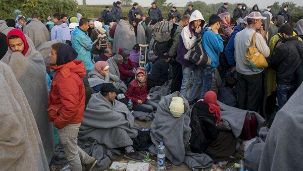 Izbeglice snimljene u blizini hrvatskog sela Babska, posle izlaska iz Srbije - Sputnik Srbija