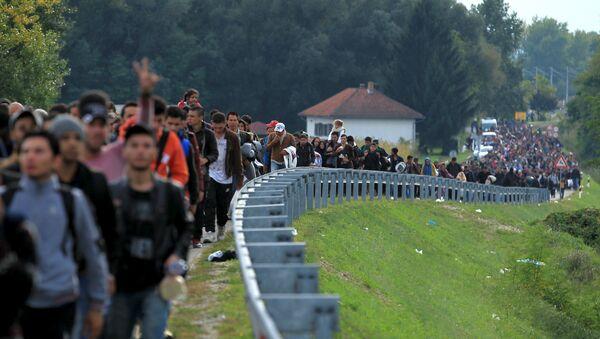 Migranti - Sputnik Srbija
