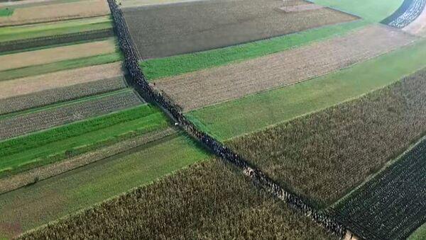 Избеглице, снимак из ваздуха - Sputnik Србија