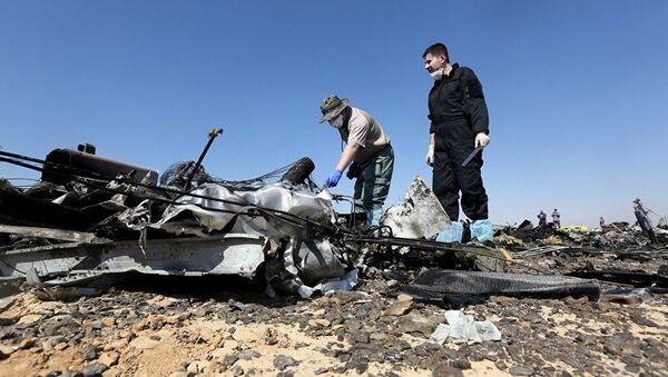 Delovi ruskog aviona koji se srušio na Sinaju - Sputnik Srbija
