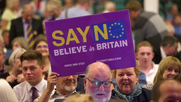 Anti-EU poruke u Velikoj Britaniji - Sputnik Srbija
