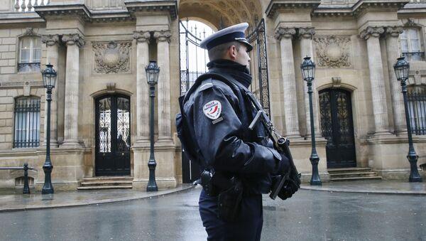 Policajac ispred Jelisejske palate u Parizu, Francuska - Sputnik Srbija