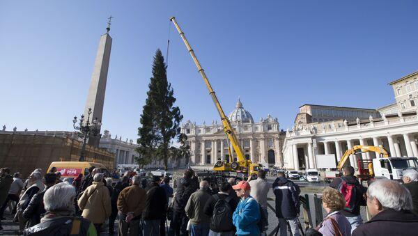 Постављање божићног дрва на Тргу светог Петра у Ватикану - Sputnik Србија
