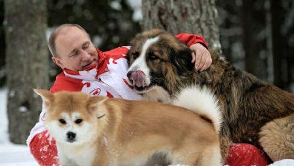 Kućni ljubimci najmoćnijih ljudi sveta - Sputnik Srbija