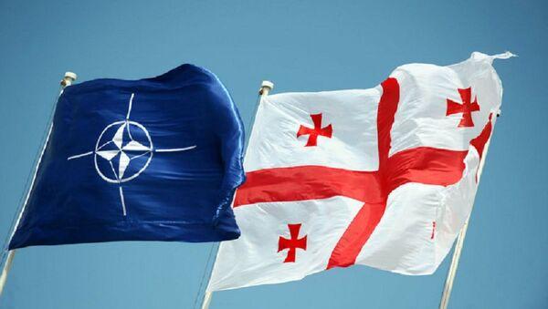 Заставе НАТО-а и Грузије - Sputnik Србија