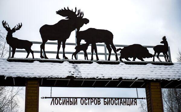 """Отварање након реконструкције биолошке станице у парку """"Острво лосова"""" - Sputnik Србија"""