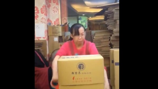 Kung Fu Packaging. Don't miss out her proud expression at the end - Sputnik Srbija