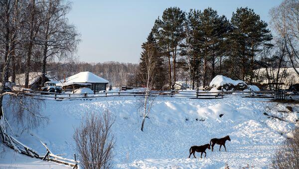 Зима у Сибиру - Sputnik Србија