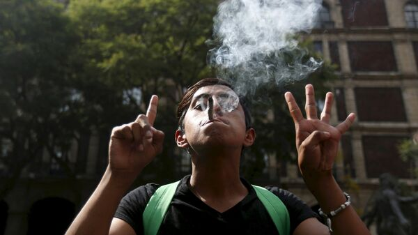 Човек запалио џоинт на демонстрацијама за легализацију марихуане - Sputnik Србија
