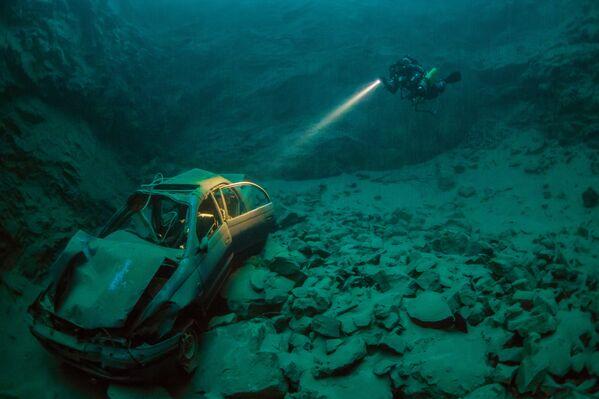 Најбоље подводне фотографије 2016. - Sputnik Србија
