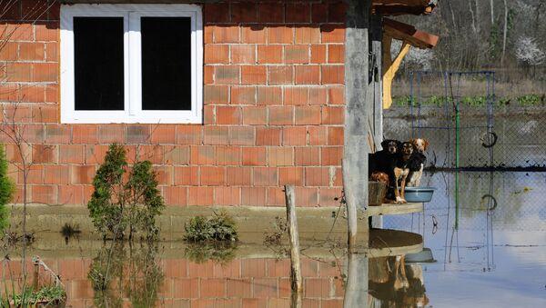Поплављене куће у насељу Пољане у Општини Обреновац - Sputnik Србија