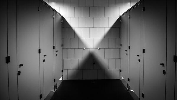 Javni toalet, ilustracija - Sputnik Srbija