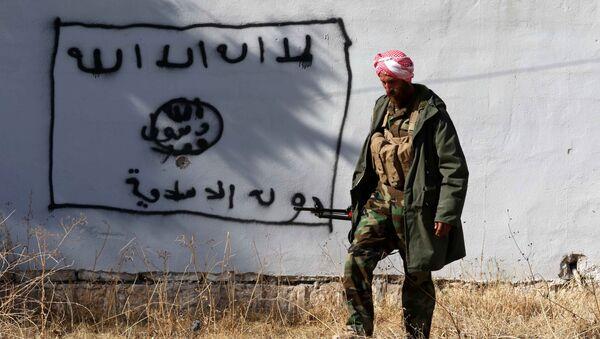 Kurdski borac prolazi pored zida na kojem je nacrtana zastava DAEŠ-a  (Islamske države) - Sputnik Srbija