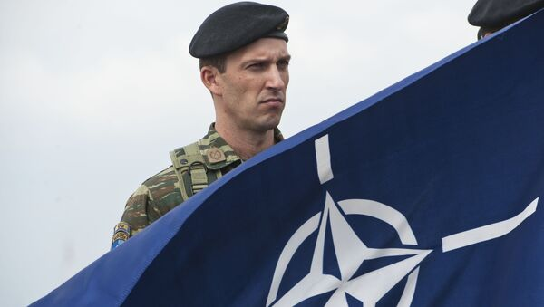 Војник са НАТО застовом - Sputnik Србија