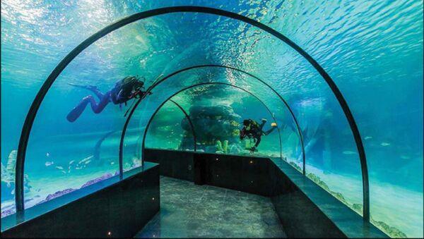 Највећи акваријум у Ирану отворен у Исфахану. - Sputnik Србија