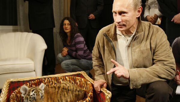 Владимир Путин са малим тигром - Sputnik Србија