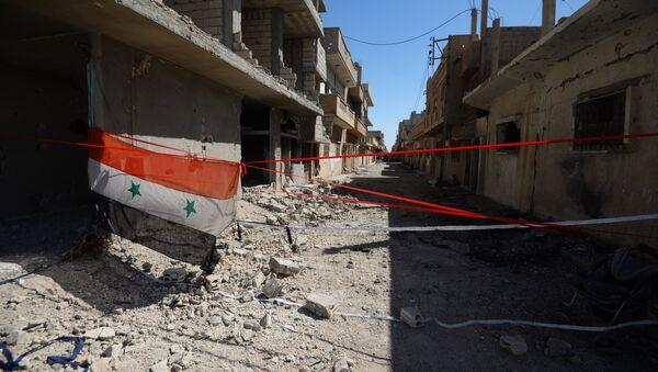 Sirijska zastava na ulicama Palmire, Sirija - Sputnik Srbija