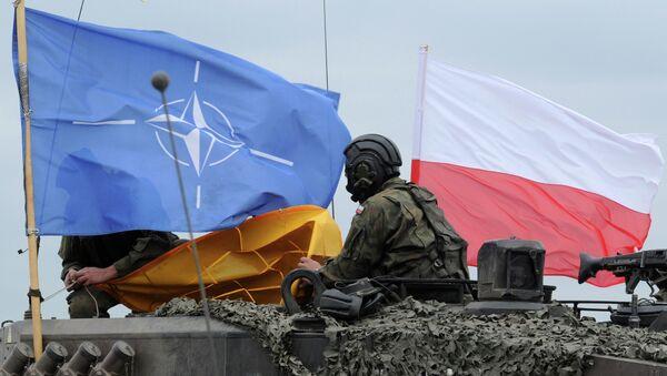 Пољски војник на војним вежбама НАТО-а - Sputnik Србија