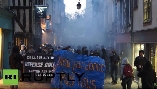 Protesti u Renu - Sputnik Srbija