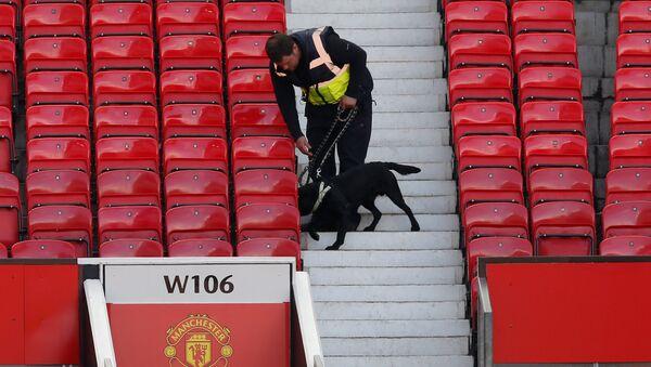 Полицијски пас на стадиону Манчестер јунајтеда Олд Трафорду након отказивања утакмице против Борнмута због бомбе на стадиону. - Sputnik Србија