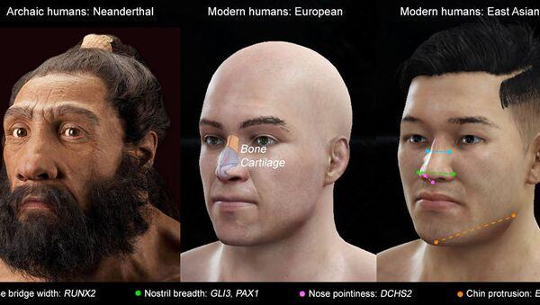 Različiti tipovi nosa i geni odgovorni za to - Sputnik Srbija