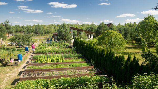 Poljoprivreda, Rusija - Sputnik Srbija