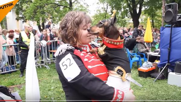 Изложба паса у Санкт Петербургу - Sputnik Србија