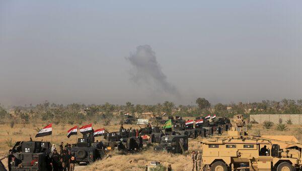 Ирачке војне снаге припремају офанзиву на Фалуџу, у Ираку, 30. мај 2016. - Sputnik Србија