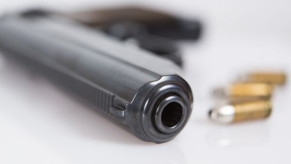 Пиштољ и муниција - Sputnik Србија