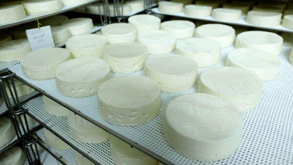 Производња сира - Sputnik Србија