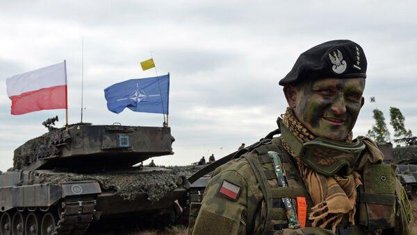 Пољски војник на војним вежбама НАТО-а у Загану - Sputnik Србија