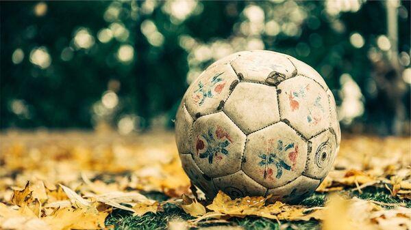 Фудбалска лопта - Sputnik Србија