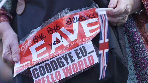 Pristalica bregzita drži transparent u Londonu - Sputnik Srbija