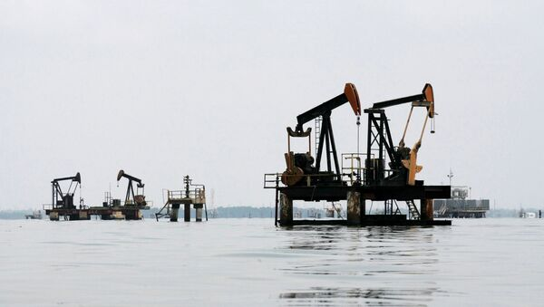 Пуме за нафту - Sputnik Србија