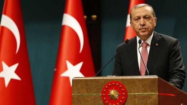 Predsednik Turske Redžep Tajip Erdogan govori na konferenciji za medije nakon Saveta za nacionalnu bezbednost u Ankari - Sputnik Srbija