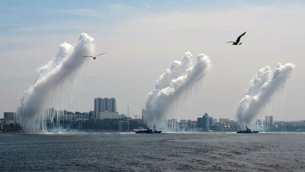 Galebovi pored ratnih brodova koji ispaljuju protivraketne projektile tokom proslave Dana mornarice u Vladivostoku, u Rusiji - Sputnik Srbija