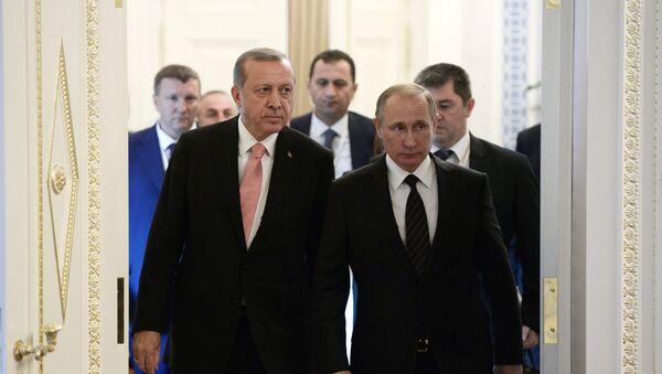 Sastanak predsednika Rusije i Turske Vladimira Putina i Redžepa Tajipa Erdogana u Sankt Peterburgu - Sputnik Srbija