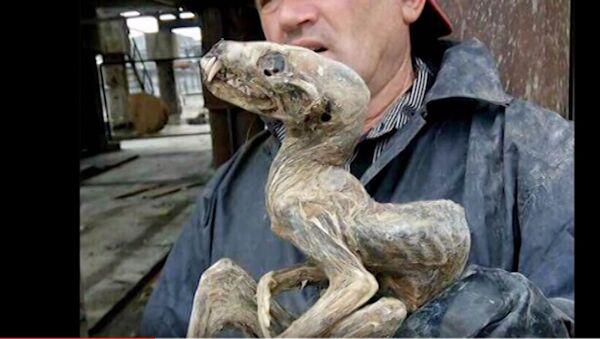 Бизарно мумифицирано створење - Sputnik Србија