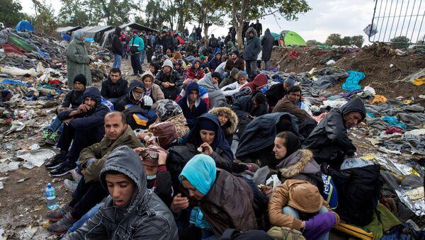 Мигранти седе дуж пута док чекају да пређу границу са Хрватском у близини села Беркасово у Србији. - Sputnik Србија