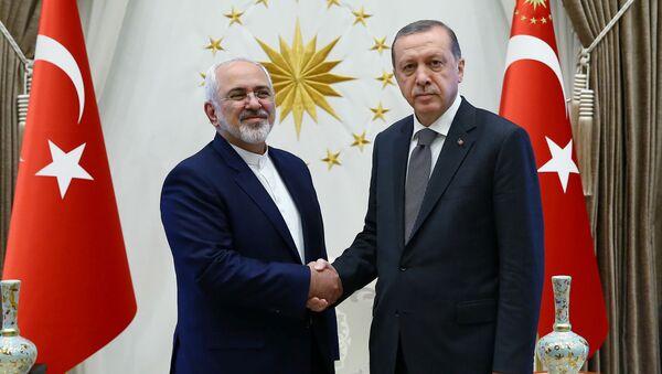 Ministar spoljnih poslova Irana Muhamed Džavad Zarif i Turski predsednik Redžep Tajip Erdogan - Sputnik Srbija