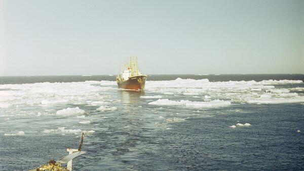 Severni morski put - Sputnik Srbija