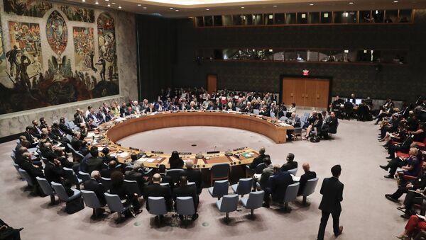 Članovi Saveta bezbednosti u sedištu UN - Sputnik Srbija
