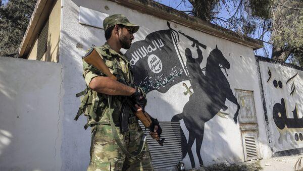 Pripadnik Sirijske slobodne armije - Sputnik Srbija
