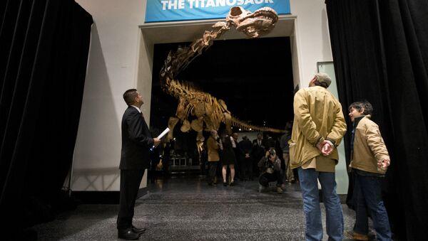 Replika 37-metara visokog titanosaurusa u američkom Prirodnjačkom muzeju u Njujorku - Sputnik Srbija
