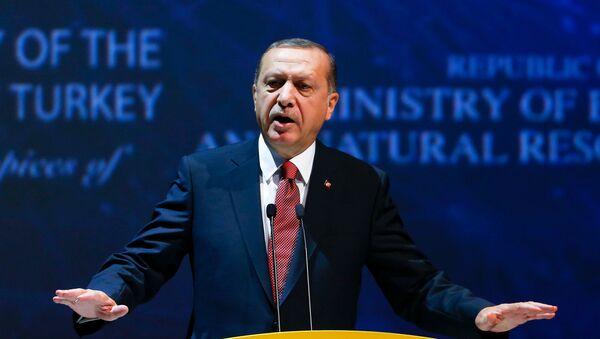 Predsednik Turske Redžep Tajip Erdogan u Turskoj, 10.10.2016. - Sputnik Srbija