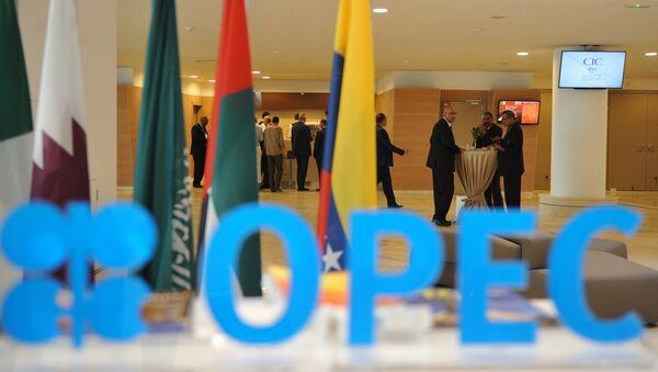 Учесници 15. енергетског форума ОПЕК у Алжиру - Sputnik Србија